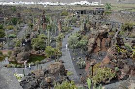 Zahrada Jardín de Cactus
